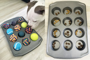 muffin tin dog puzzle
